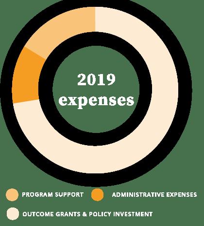 REACH 2019 expenses pie chart